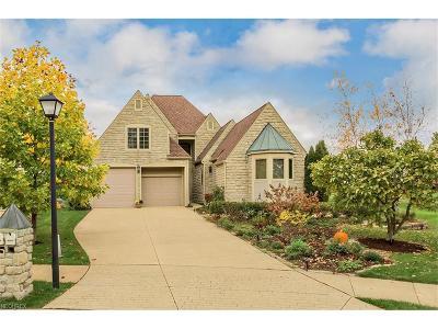Avon, Avon Lake Single Family Home For Sale: 4250 Vilamoura Dr