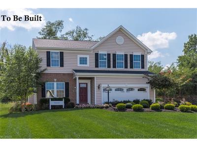 Single Family Home For Sale: 6 Ethan Dr