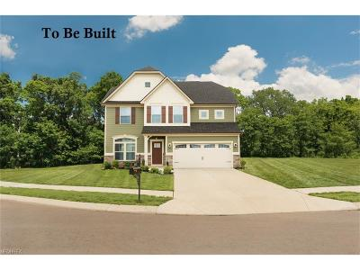 Twinsburg Single Family Home For Sale: 3530 Shady Timber Dr