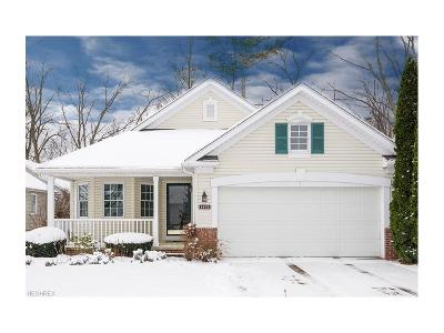 Brecksville, Broadview Heights Single Family Home For Sale: 1472 Golden Ln