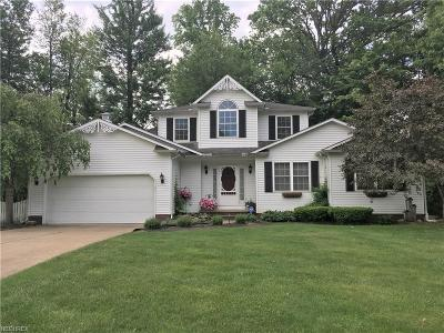 Lake County Single Family Home For Sale: 198 Radley Dr