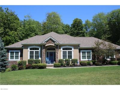 North Royalton Single Family Home For Sale: 4660 Brookhaven Dr