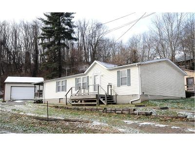 Guernsey County Single Family Home For Sale: 553 Dewey Ave