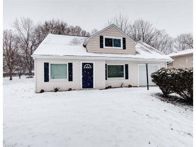 Willoughby Single Family Home For Sale: 37928 Erie Rd