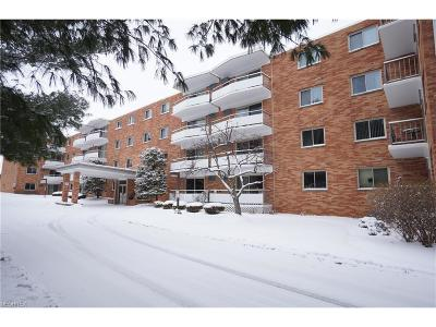 Brecksville, Broadview Heights Condo/Townhouse For Sale: 521 Tollis #294