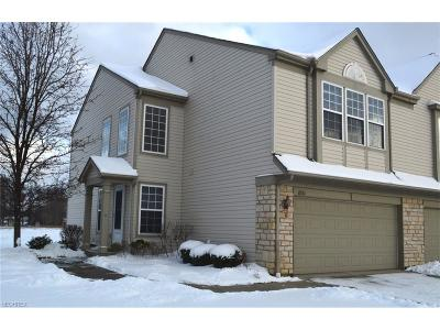 Cuyahoga County Single Family Home For Sale: 8561 Dunham Dr
