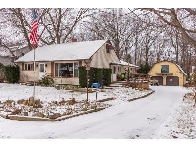 Avon, Avon Lake Single Family Home For Sale: 146 Avon Point Ave