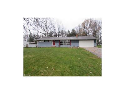 Strongsville Single Family Home For Sale: 16867 Northview Dr