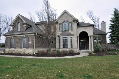 Avon, Avon Lake Single Family Home For Sale: 32473 Legacy Pointe