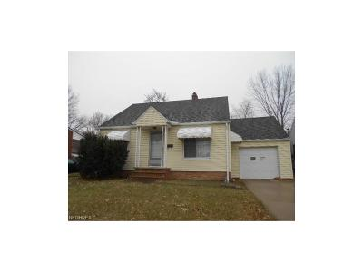 Euclid Single Family Home For Sale: 23000 Tracy Ave
