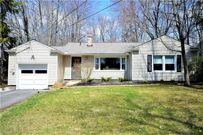 Chagrin Falls Single Family Home For Sale: 203 Hazelwood Dr