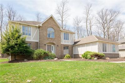 Brecksville Single Family Home For Sale: 3831 Sweetwater Dr