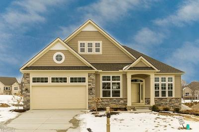 Broadview Heights Single Family Home For Sale: 547 Fairway Ln