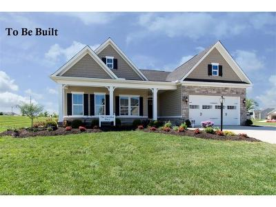 Columbia Station Single Family Home For Sale: 42 White Tail Run