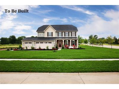Columbia Station Single Family Home For Sale: 43 White Tail Run