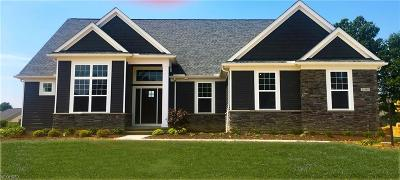 Strongsville Single Family Home For Sale: 11398 Love Ln #SL5