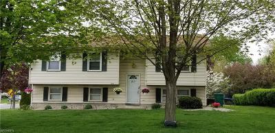 Boardman Single Family Home For Sale: 186 Runnemede Dr