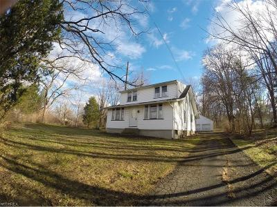Painesville Township Single Family Home For Sale: 1340 Riverside Dr