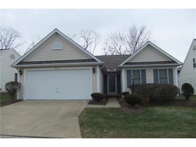 Brunswick OH Single Family Home For Sale: $169,900