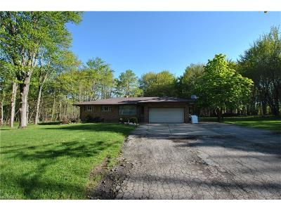 Broadview Heights Single Family Home For Sale: 1780 West Royalton Rd