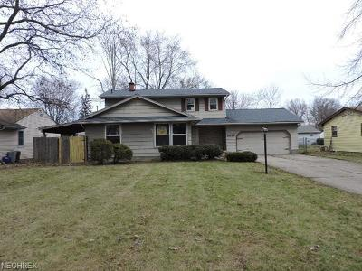 Youngstown OH Single Family Home For Sale: $82,900