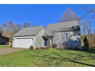 Single Family Home For Sale: 1051 Terrace Ct