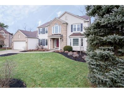 Strongsville Single Family Home For Sale: 17898 Monterey Pine Dr
