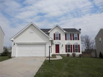Twinsburg Single Family Home For Sale: 1799 Curry Ln