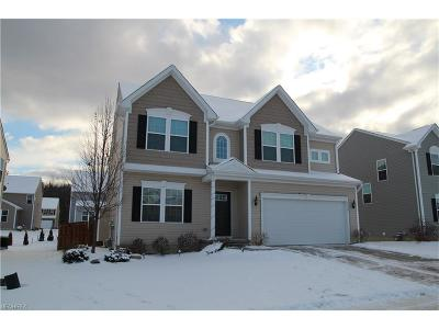 Twinsburg Single Family Home For Sale: 3144 Liberty Ledges Dr