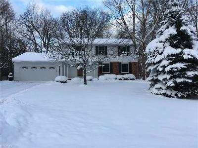 Painesville Township Single Family Home For Sale: 311 Manhattan