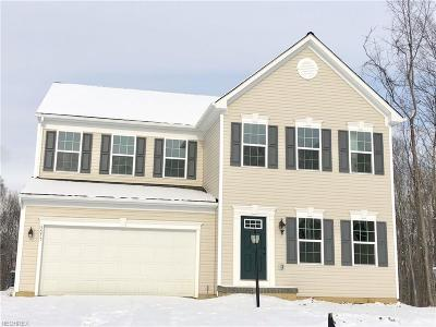 Twinsburg Single Family Home For Sale: 3575 Jude Cir