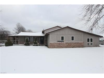 Columbia Station Single Family Home For Sale: 12869 Hawke Rd