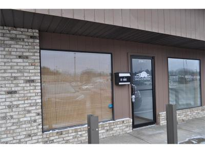 Zanesville Commercial For Sale: 2796 Maple