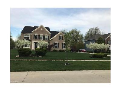 Avon Single Family Home For Sale: 3214 Stone Wheel St
