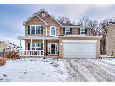 North Ridgeville Single Family Home For Sale: 38405 Loman Ct