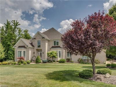 Broadview Heights Single Family Home For Sale: 9865 Hidden Hollow Trl