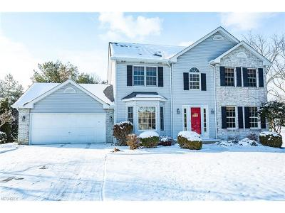 Brunswick Single Family Home For Sale: 556 Montgomery Dr