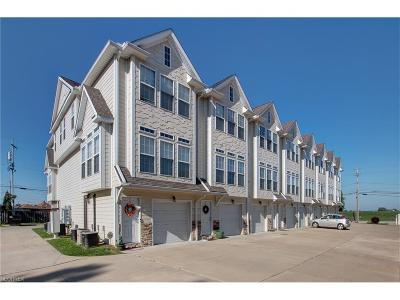 Lake County Condo/Townhouse For Sale: 30056 Euclid Ave #8