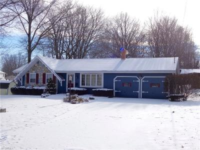 Boardman Single Family Home For Sale: 3029 Straley Ln