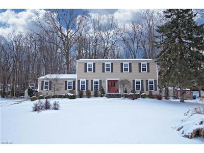 Copley Single Family Home For Sale: 405 Pinewood Spur