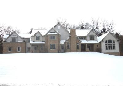 Summit County Single Family Home For Sale: 544 Scenic Valley Way