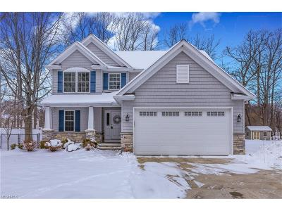 Lake County Single Family Home For Sale: 8111 Munson Rd