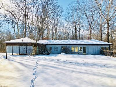Summit County Single Family Home For Sale: 4390 Everett Rd