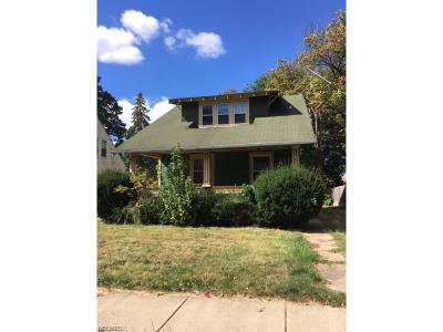 Wadsworth Single Family Home For Sale: 64 Fairview Ave