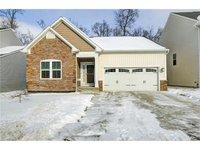 Brunswick Single Family Home For Sale: 3159 Blackburn Ln