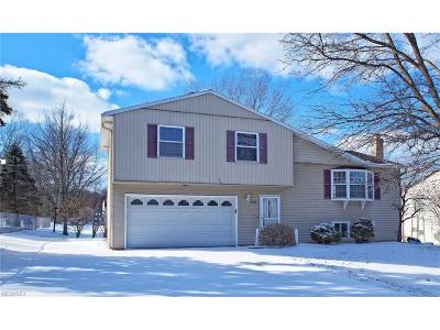 Twinsburg Single Family Home For Sale: 9882 Chamberlin Rd