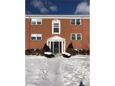 North Olmsted Condo/Townhouse For Sale: 23492 David Dr #D204
