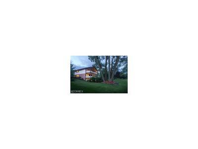 Shaker Heights Single Family Home For Sale: 20700 University Blvd