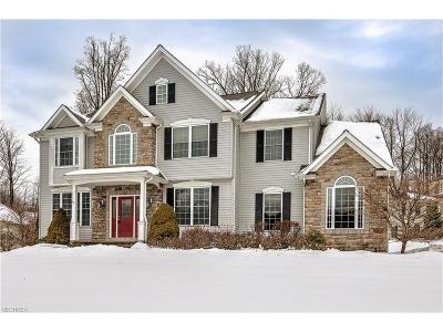Chagrin Falls Single Family Home For Sale: 7930 Cobblestone Ln