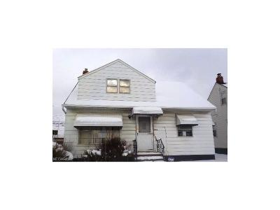 Maple Heights Single Family Home For Sale: 19011 Fairway Ave